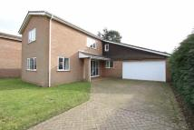 Detached home to rent in Beech Way...