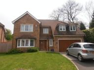 Detached house to rent in Banstead