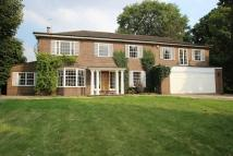 7 bedroom Detached house in Epsom