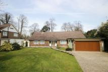 Bungalow for sale in Tadworth