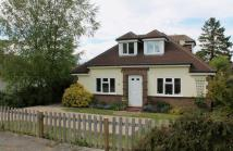 3 bed Detached Bungalow in Lower Kingswood