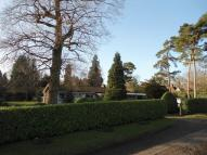 3 bed Detached Bungalow to rent in Mill Green, Ingatestone