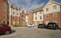 Flat to rent in Lenthall Avenue, Grays