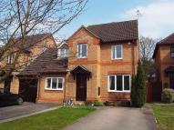 Link Detached House to rent in Astra Mead...