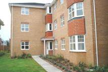 Apartment in Pettycross, Suffolk Cl...