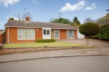 Detached Bungalow to rent in Sheddick Court, Dereham