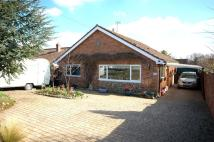 2 bedroom Detached Bungalow in Oakland Drive, Beetley...