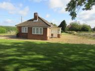 Cawston Road Detached Bungalow to rent