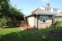 semi detached house to rent in St Margarets Drive...