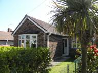 Semi-Detached Bungalow to rent in The Drive, Potters Bar...