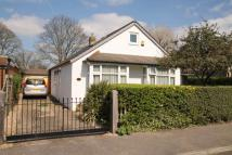 Detached Bungalow for sale in Iona Crescent, SLOUGH...