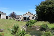 Detached Bungalow in Edge of Yatton