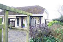 Pitmore Lane Studio flat to rent