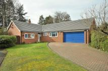 3 bed Detached Bungalow in Three Ways, Delamere Park