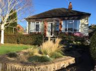 Willington Lane Detached Bungalow to rent