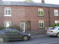 Terraced house to rent in Chester Road, Hartford