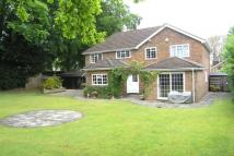 5 bedroom Detached home in Tilehurst