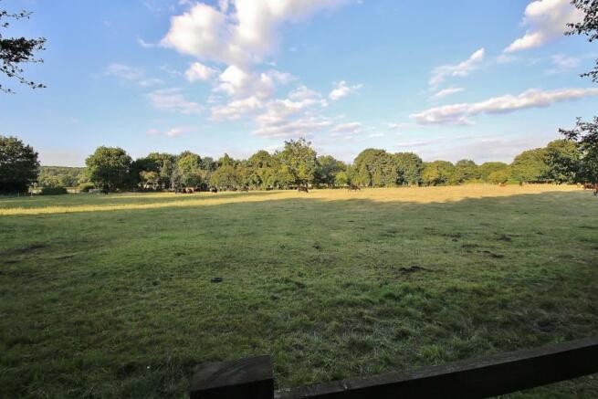 Nearby Field.JPG