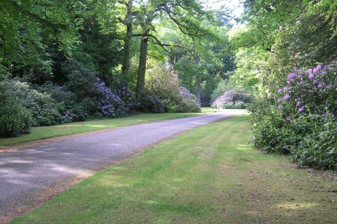 Main Driveway 3.JPG