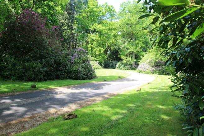 Main Driveway.JPG