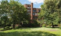 Studio flat to rent in Riverdale Road, Lewisham
