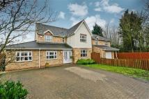 Detached property in Merrivale Close...