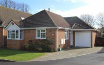Bungalow for sale in New Milton, Hampshire