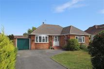 Bungalow for sale in Barton On Sea, Hampshire
