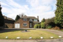 4 bed Detached home for sale in Warren Road Blue Bell...
