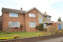 Detached property for sale in Trapham Road, Maidstone