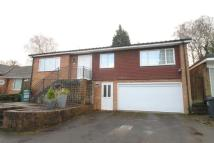 Bungalow for sale in Neville Close...