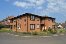 Flat to rent in Hicks Court, Towcester