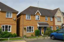 Ashby Court semi detached house to rent