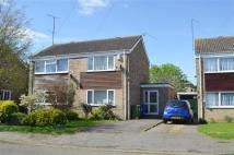 3 bedroom semi detached house to rent in Wellspring, Blisworth