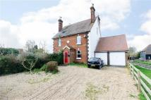 semi detached property for sale in Wetham Green Cottages...