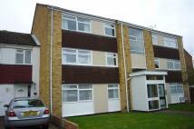 2 bed Flat to rent in Mardale Close, Rainham...