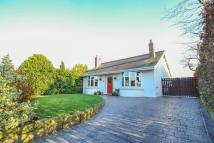 Detached Bungalow for sale in Stunning True Bungalow -...
