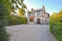 Detached house in Amazing Opportunity -...