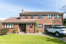 Detached property for sale in Upholland Road, Billinge...