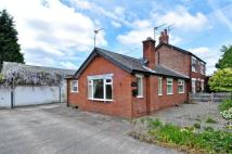 2 bed Semi-Detached Bungalow to rent in Sandy Lane, Mawdesley...