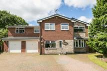 6 bed Detached property in Chiltern Drive...