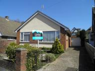 Detached Bungalow for sale in Halsdon Avenue, Exmouth