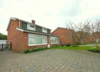 3 bed Terraced house to rent in THREE BEDROOM HOUSE....