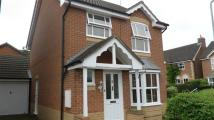 property to rent in FOXGLOVE CLOSE, BISHOPS STORTFORD