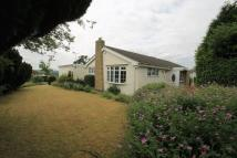 3 bed Detached Bungalow in THRUSHTON CLOSE, FINDERN
