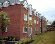 1 bedroom Flat to rent in Little Moss Court...