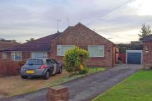 2 bed Semi-Detached Bungalow for sale in Knaphill, Surrey