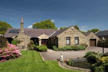 Detached Bungalow to rent in Panorama Drive, Ilkley