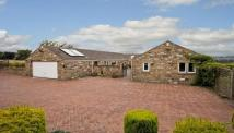 4 bed Detached house in The Mistles...