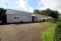 Semi-Detached Bungalow for sale in Cwrt Griffin, Rudry...